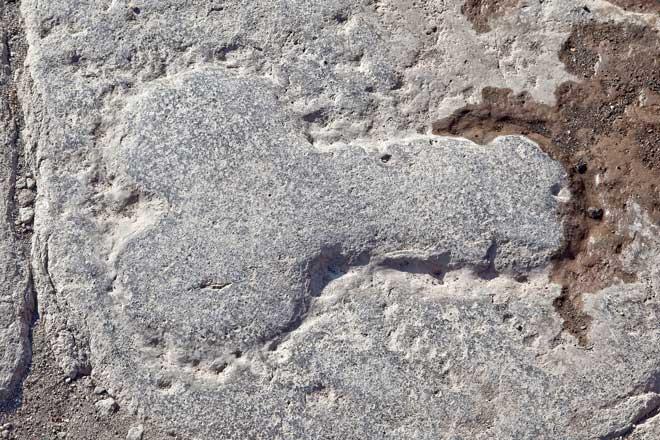 Pompeii penis sculpture