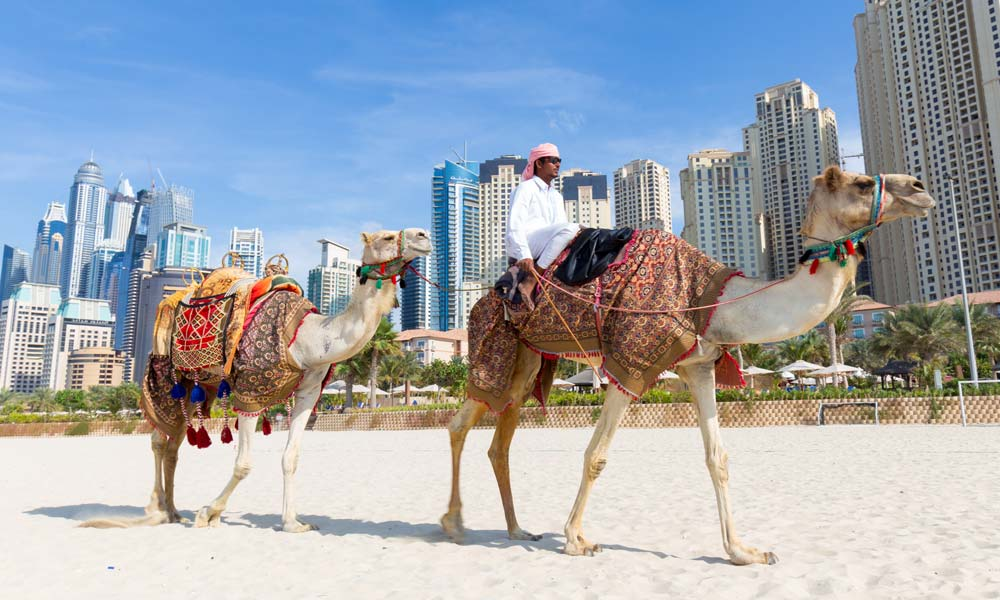 Dubai anti gay travel