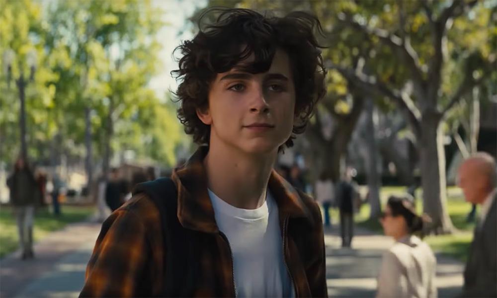 Timothée Chalamet Plays a Teen Meth Addict In 'Beautiful Boy'