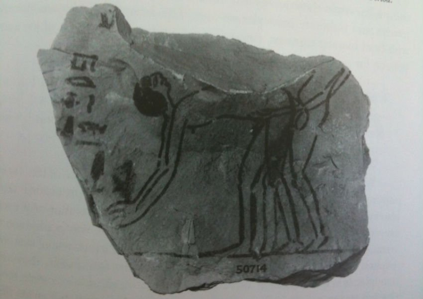A Ramesside period ostracon, depicting two men in coitus