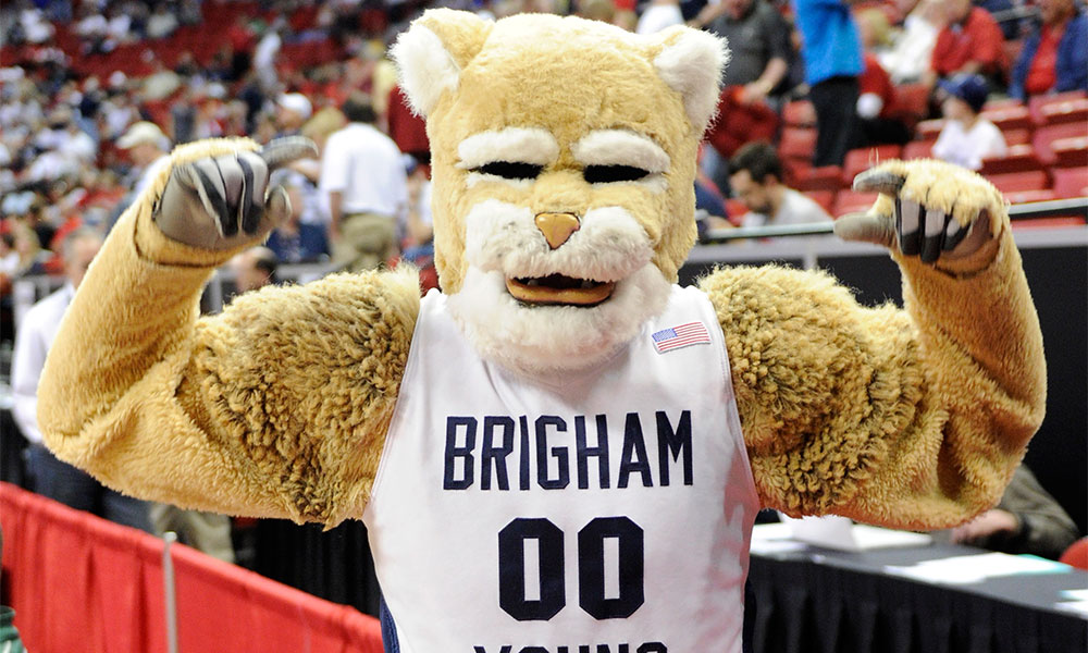 Cosmo the Cougar
